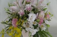 白とピンクの花でのサムネール画像
