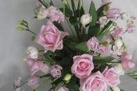 20150218 ピンクの花.jpg