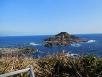 下田・爪木崎からの海