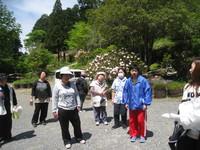 20140512三島さくら法生寺1