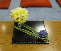 150404花祭り小品2