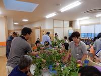 20170621さくら1.JPG