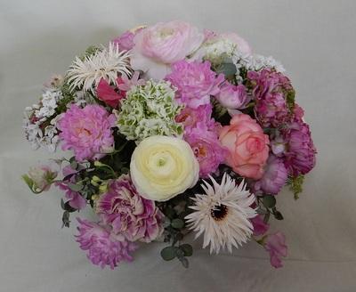ドーム 春の花